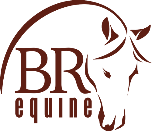 BR Equine logo