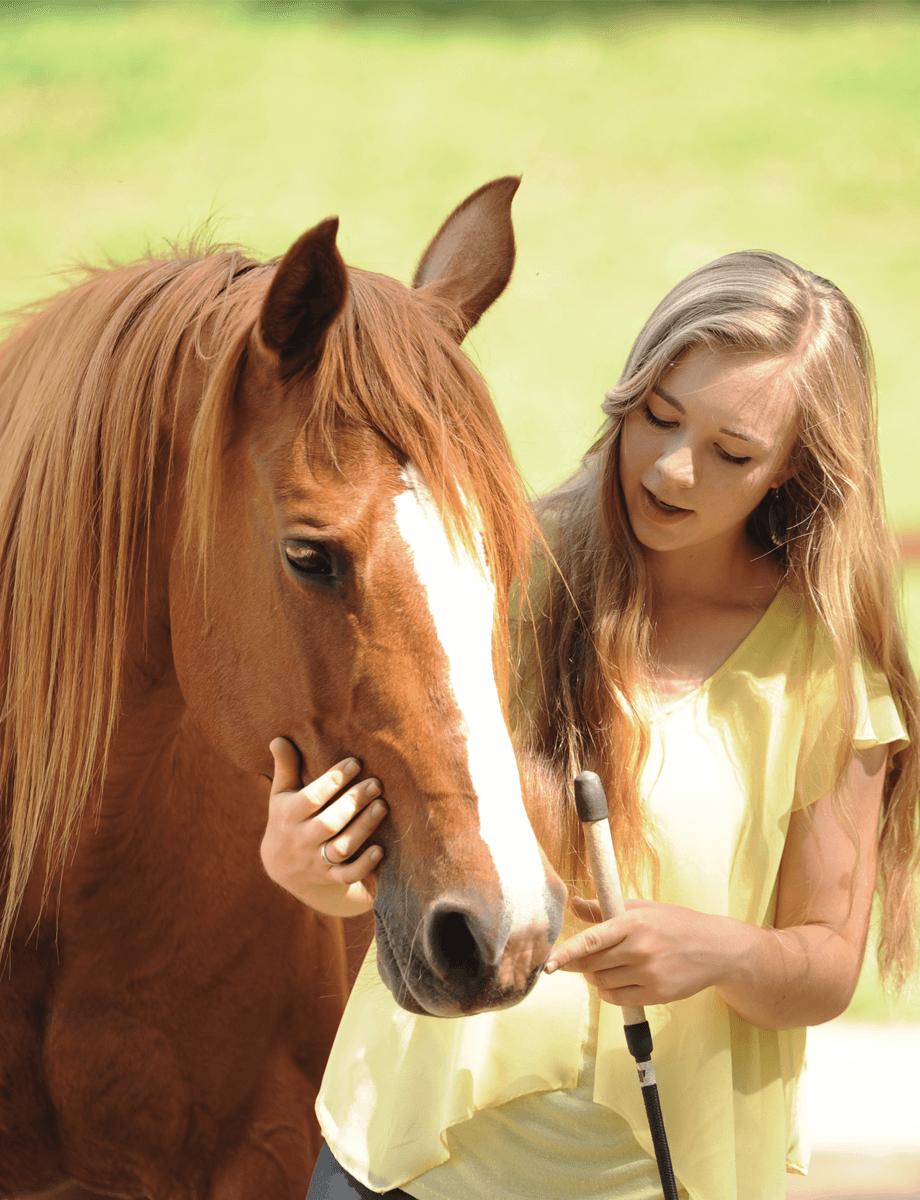 Horse wearing a bareback pad